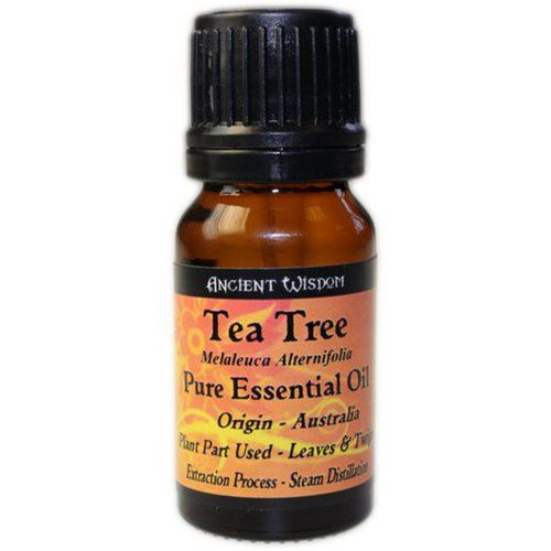 Tea Tree Essential Oil 10ml - Himalayan Salt Lamps Buy 100% Himalayan Salt