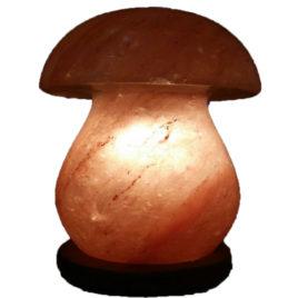 Himalayan Mushroom shape